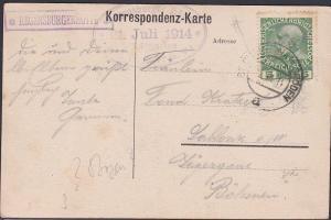 AUSTRIA 1914 postcard framed *RENGENSBURGERHUTTE* handstamp................53662