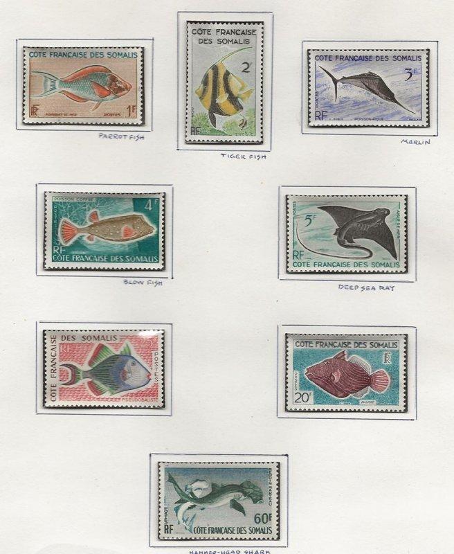 Comoro Islands 275-282 m