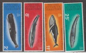 British Antarctic Territory Scott #64-67 Stamps - Mint NH Set