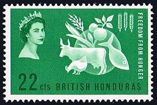 British Honduras 179, MNH. FAO. Freedom from Hunger campaign.Protein Food,1963