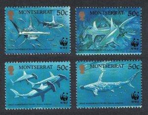 Montserrat WWF Great Hammerhead Shark 4v 1999 MNH SC#998 a-d SG#1148-1151