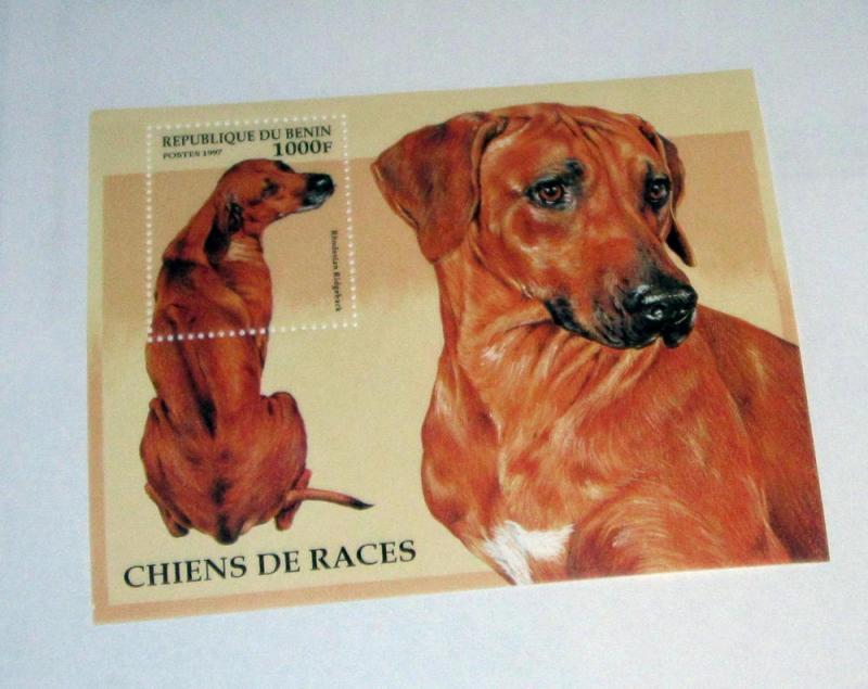 Benin - 986, MNH S/S. Dog. SCV - $6.50