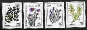 ALGERIA 1992 MEDICINAL PLANT STAMPS - MINT COMPLETE SET OF 4!