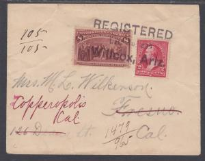 US Sc 236, 267 on 1895 Registered Cover, Wilcox, Ariz Territory postmark