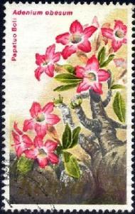 Flower, Adenium Obesum, Kenya stamp SC#255 used
