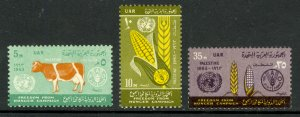 EGYPT OCCUPATION GAZA PALESTINE 1963 FAO FREEDOM FROM HUNGER Set Sc N93-N95 MNH
