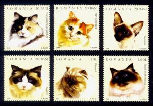 Romania Sc# 4778-83 MNH Cats