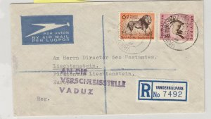 South Africa 1965 Airmail Cover To Liechtenstein Postal History J6061