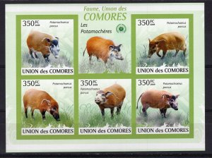Comoro Islands MNH S/S Red River Hogs 2009 5 Stamps
