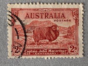 Australia Dark Hills 1934 2d Sheep, used. Scott 147a, CV $7.25.  SG 150a