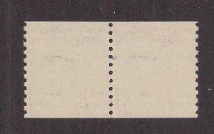 UNITED STATES SC# 1617a  DULL GUM  PAIR  FVF/MNH