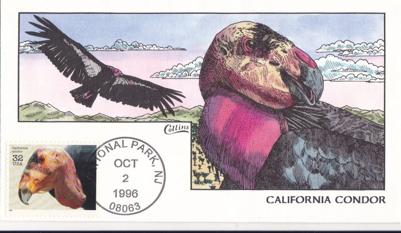 COLLINS HAND PAINTED FDC Sc# 3105i Endangered Species 1996 First Day Issue