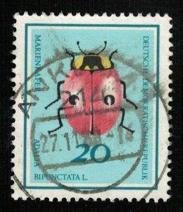 Beetle (TS-2041)