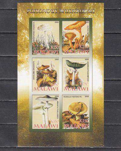 Malawi 2008 M/S Poisonous Mushrooms Plant Nature Flora Stamps MNH imperforated