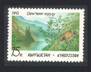 Kyrgyzstan Pheasant Bird Sary-Chelek Nature Reserve 1992 MNH SG#1