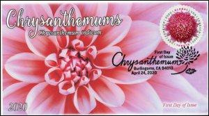20-087, 2020, Chrysanthemum, Pictorial Postmark, First Day Cover, International