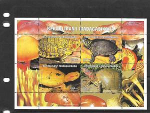 MALAGASY REPUBLIC,1999 TURTLES SOUVENIR SHEET, UNLISTED SHEET