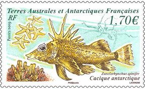 Scott #606 Antarctic Fish MNH
