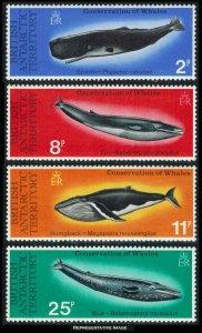 British Antarctic Territory Scott 64-67 Mint never hinged.