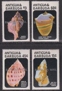 1986 Barbuda Conch Shells complete set of four MNH Sc# 813 / 816 CV $42.25
