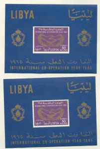 Libya # C51a  Cooperation Year - souvenir sheet perf. & imperf. (2) Mint NH