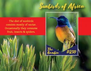 Gambia 2019 Sunbirds of Africa (ss/1v)