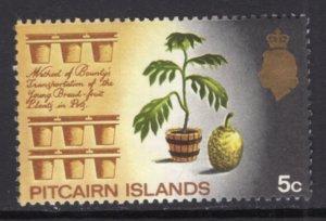 Pitcairn Island 101 MNH VF