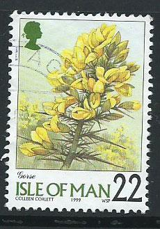Isle of Man  SG 780 VFU imprint 1999