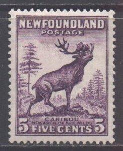 Canada Newfoundland Scott 191a - SG225c, 1932 George V 5c Die II MH*