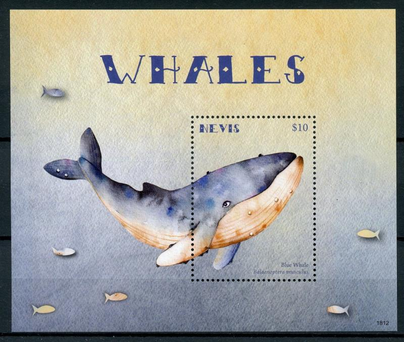 Nevis 2018 MNH Whales Blue Whale 1v S/S Marine Animals Stamps
