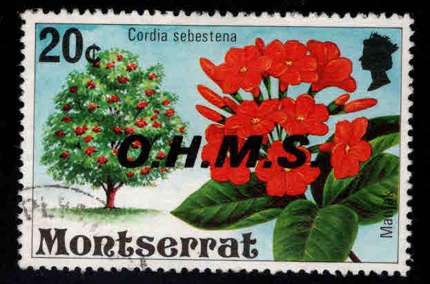 Montserrat Scott o13 used CTO official flower stamp