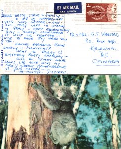 Australia, Picture Postcards