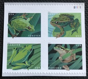 US #5395-5398 MNH Plate Number Booklet Block of 4 (.55) Frogs