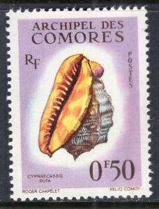 Comoro Islands 48 Seashell MNH VF