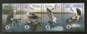 Poland MNH Strip 3700 Osprey Eagles WWF 2003