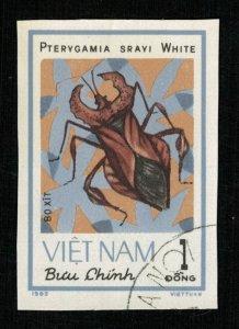 Beetle (TS-2048)