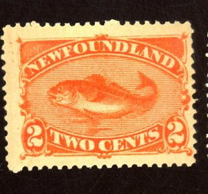 NEWFOUNDLAND #48 MINT FVF OG LT THIN Cat $33