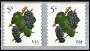SC#5038 5¢ Grapes Coil Pair (2016) SA