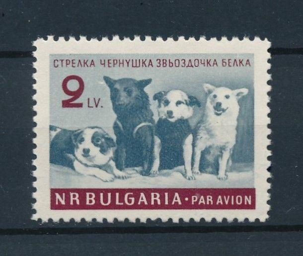 [96970] Bulgaria 1961 Space Travel Weltraum Pets Dogs  MNH