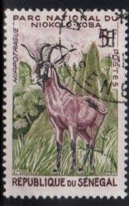 Senegal Scott No. 195