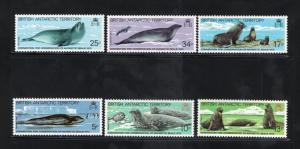 BRITISH ANTARCTIC TERRITORY Sc# 96 - 101 MNH FVF Set-6 Seals