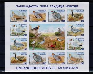 Tajikistan 1996 Birds Shlt (12 +L)  MNH Sc # 84-89  IMPERF.