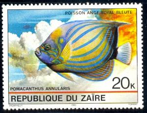 Tropical Fish, Blue-ringed Angelfish, Zaire SC#977 MNH