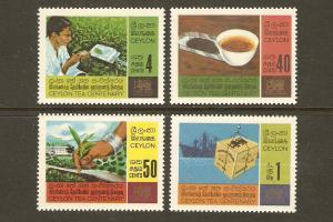 Ceylon #405-8 NH Tea Industry