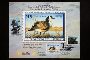 US Federal Duck Stamp Collection