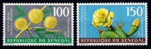 [65880] Senegal 1967 Flora Plants Pflanzen Cactus Airmail MNH
