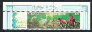 Senegal Birds Egrets Bee eaters Basse Casamance National Park Top strip of 2v