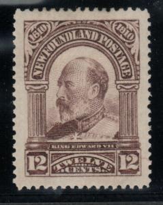 Newfoundland #102 Extra fine Mint Original Gum Hinged Gem