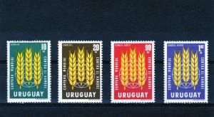 Uruguay 1963 FAO Freedom from Hunger (4) Sc#700/1C254/5 MNH