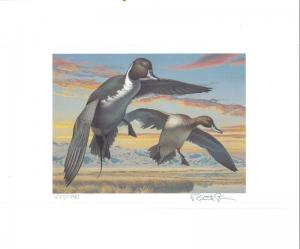 NEVADA #6 1984 STATE  DUCK  STAMP PRINT PINTAILS by Robert Steiner